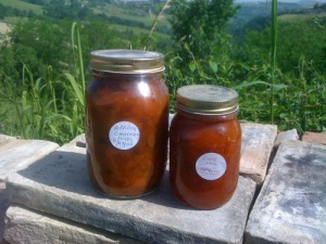 One Jar Apricot Chutney One Jar Apricot Jam