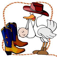 cowboy stork
